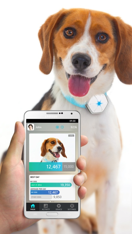 Dogtra StarWalk smart monitor pohybu